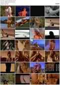 Bodacious Beauties (1993)