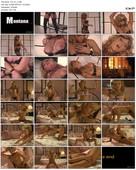 Bedroom Fantasies (2005)