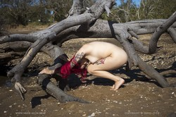 Lillith Rose - Branches